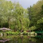 L'hiver au Jardin des Plumes de Giverny
