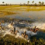 Un safari au Botswana