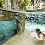Un Center Parcs encore plus nature