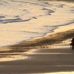 Jersey, exil estival idéal