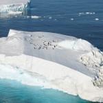 Chic, une expédition en Antarctique !