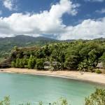 Plongée dans le jardin des Comores