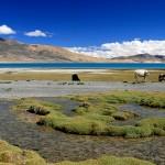 Un voyage au Tibet teinté de spiritualité