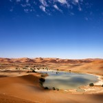 Safari d'automne en Namibie