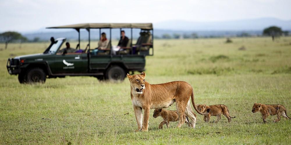 Sous le ciel du Serengeti