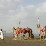 Oman, le joyau le mieux gardé d'Orient