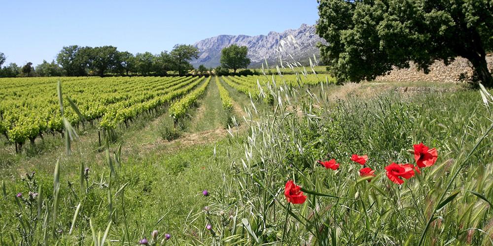 Le Pré Gourmand de la Provence