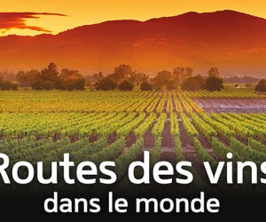 La Route des vins - photo DR - Copie (3)